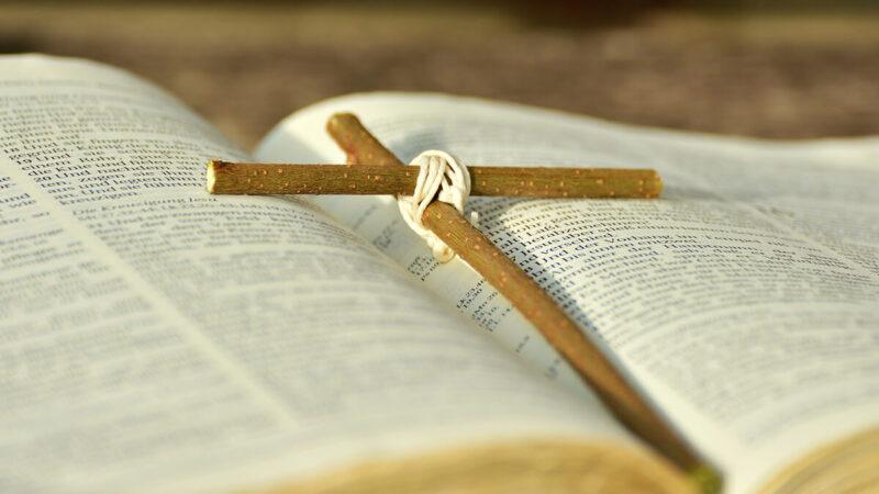 « Regnum Christi a toujours été un appui dans ma vie spirituelle, sociale, étudiante »